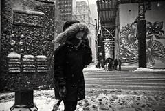 Fifth Avenue (Roy Savoy) Tags: bw blackandwhite streetphotography street nyc monochrome people roysavoy newyorkcity newyork blacknwhite streets streettog streetogs ricoh gr2 candid flickr explore candids city photography streetphotographer 28mm nycstreetphotography gothamist tog mono flickriver snap digital monochromatic blancoynegro