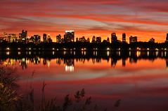 Sunset in Central Park - NY (HaroldoBraune) Tags: park parque sunset red sky newyork reflection nikon centralpark manhattan awesome vermelho lindo prdosol eua vista reflexo legal novaiorque incrvel jacquelinekennedyonassisreservoir mywinners colorphotoaward nikond90 theunforgettablepictures cu haroldobraune