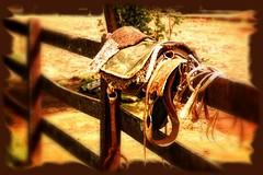 Quando  a alma encilha um verso... (mauroheinrich) Tags: brasil nikon gauchos ctg riograndedosul pampa querencia gaucho gacho gachos 18200vr ibirub fotgrafosbrasileiros fotgrafosgachos ranchodostropeiros tropereadas fotgrafosdosul