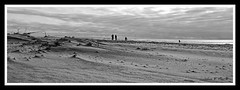 Strathmere, NJ (John F Hark) Tags: beach coast sand waves dunes nj jerseyshore 1224mm d300 strathmere snarkphoto