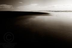 Karekare Beach (Andrew S. Gibson) Tags: sea newzealand sky seascape beach beauty clouds landscape blacksand sand peace tranquility auckland northisland karekarebeach epiceditsselection