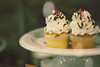 no such thing as too many cupcakes (ginnerobot) Tags: dessert 50mm cupcakes pretty sweet plate bakery vanilla frosting bakedgoods displaycase gianteagle marketdistrictgianteagle