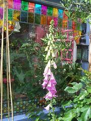 (Romany Soup) Tags: plants window lantern foxglovestainedglassgarden