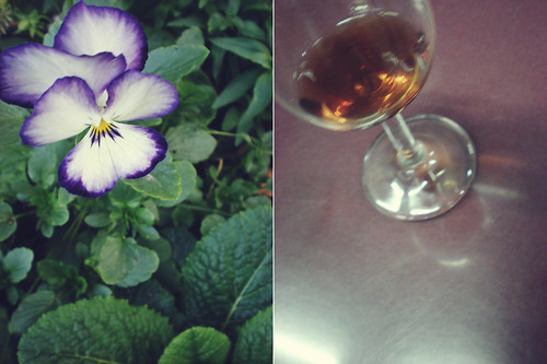 Wine and Flowers [329/365]