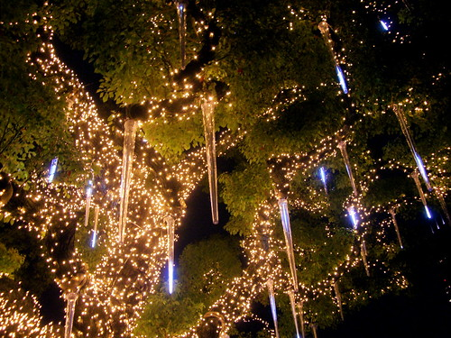 OSAKA光のルネサンス 中之島公園 2009.12.13