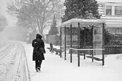 H, het sneeuwt! (KennethVerburg.nl) Tags: christmas winter white snow holland netherlands dutch sneeuw nederland wit flevoland almere almerehaven