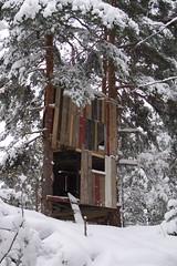P1080970 (erikflickr) Tags: wood snow treehouse skog trehytte