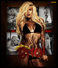 Some call me a BITCH - Heidi Montag [To daniel Suarez] (Jay.Feria) Tags: music me heidi call good some bitch stupid biatch spencer pratt superficial montag copias luser 569 vendidas