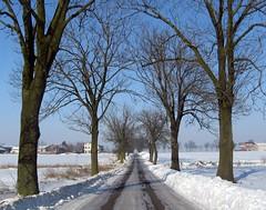 Bye, I'm going for my winter holidays (Agnieszka G.) Tags: winter poland polska invierno tum zima polonia supershot goldstaraward