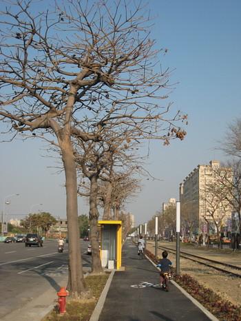 西臨港線自行車道2