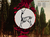 (Miumachi) Tags: forest skeleton mushrooms graphicdesign deer anatomy round magicmushrooms jackconte makesomethingcooleveryday sofiaajram bodonistdposteritalic miumachi nowthatssacred