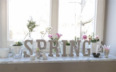 Is Spring there, yet? (moline) Tags: wood flowers white spring letters whiteonwhite