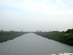 每年必須花錢清除河道的紅樹林@後港溪