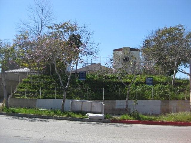 2010-03-15 929 West Hyde Park (3) by Jodi Summers
