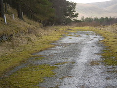 Dead End (oorwullie7) Tags: scotland forestry crawford oldroad lanarkshire elvanfoot