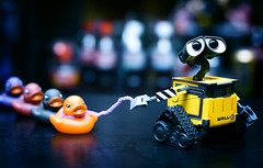 Quack Quack (FUNKYAH) Tags: toy duck disney rubberducks walle wallee