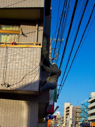 KingKong esto es protección de un balcón