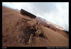 Lizard of Wood - UTAH (NYC-arts) Tags: wood usa canon utah canyon lizard bryce