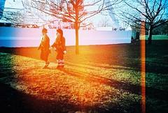 lost elves (golfpunkgirl) Tags: park christmas winter cold london lomo lca xpro lomography crossprocessed lightleak burn hydepark 2009 winterwonderland elves lomoslidefilm100