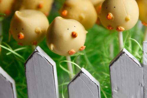 chick cake pops and fence