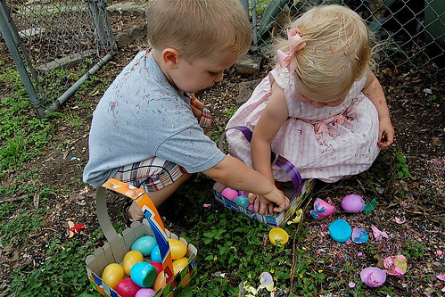 Inspecting Eggs