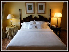 hotel-room-discount-travel-insurance