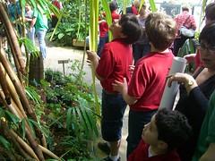 Botanical Gardens Conservatory - 3-5-10 (asgtc) Tags: school texas fortworth gifted talented tarrantcounty parkercounty andersonschool andersonschoolnet andersonprivateschool asgtc creative1036