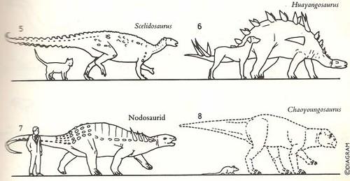 """The Dinosaur Data Book"" (1990) p. 31"