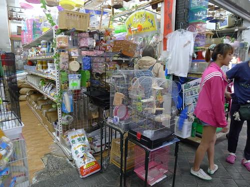 萬華鳥街-鳥用品店