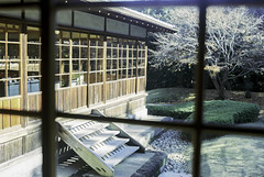 Japanese traditional architecture (eraplatonico) Tags: wedding 120 garden japanese kodak traditional 100mm 400 yokohama portra iis plaubel makina sankeien f29 anticomar
