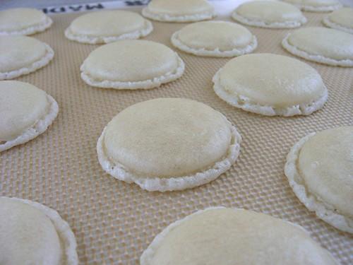 macaron_b4_baked