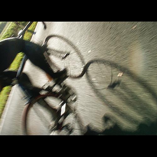 _sunny_cycling