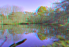 Woodtick Recreation Area #8 (Anaglyph) (johnmjoy) Tags: duck 3d pond connecticut anaglyph reservoir area recreation hdr wolcott scoville woodtick
