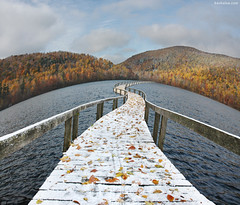 The Floating Bridge (Ben Heine) Tags: autumn trees wallpaper mist mountain lake canada art fall nature colors misty fog composite composition forest print poster photography countryside leaf nikon waves colours bend quebec path couleurs surrealism space hill dream foggy lac biosphere wideangle simulation compo fisheye mount explore arbres valley harmony montage photomontage connected curve copyrights vagues connection chemin feuilles brume colline indiansummer ecosystem otherworld waterscape coldness saison courbe floatingbridge ondes compositephoto halucination montsthilaire divagation benheine tindien benjaminheine pontflottant hubzay infotheartisterycom