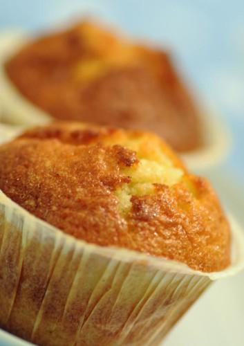 vanillabeancupcakes