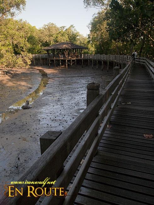 Sungei Buloh Mangrove Boardwalk