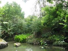 Chinese Scholar's Garden 8