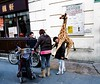 Randy giraffe attacks small boy (deepstoat) Tags: london zeiss chinatown 28mm randy giraffe contaxg2 biogon autaut deepstoat