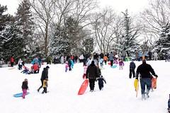 Central Park Sledding (hoyachicknyc) Tags: christmas newyorkcity winter snow newyork nature centralpark snowstorm gothamist blizzard