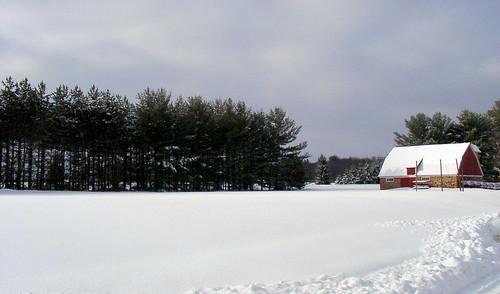 SnowBarn