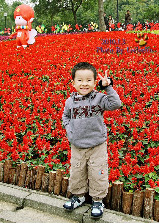 大安森林公園花卉展|捷運大安森林公園站