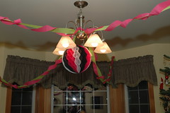 2010 01 02 014 (David Votroubek) Tags: birthday party 16th celis