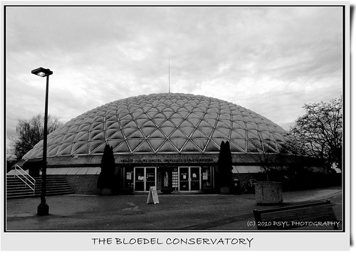 The Bloedel Conservatory...saved for now