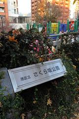 Tokyo 2009 - 六本木 - 櫻花坂公園(1)