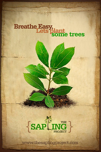 The Sapling Project Poster
