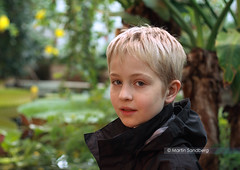 Portrait in a greenhouse (Swedish Goose) Tags: canon eos gap canonef50f18 400d