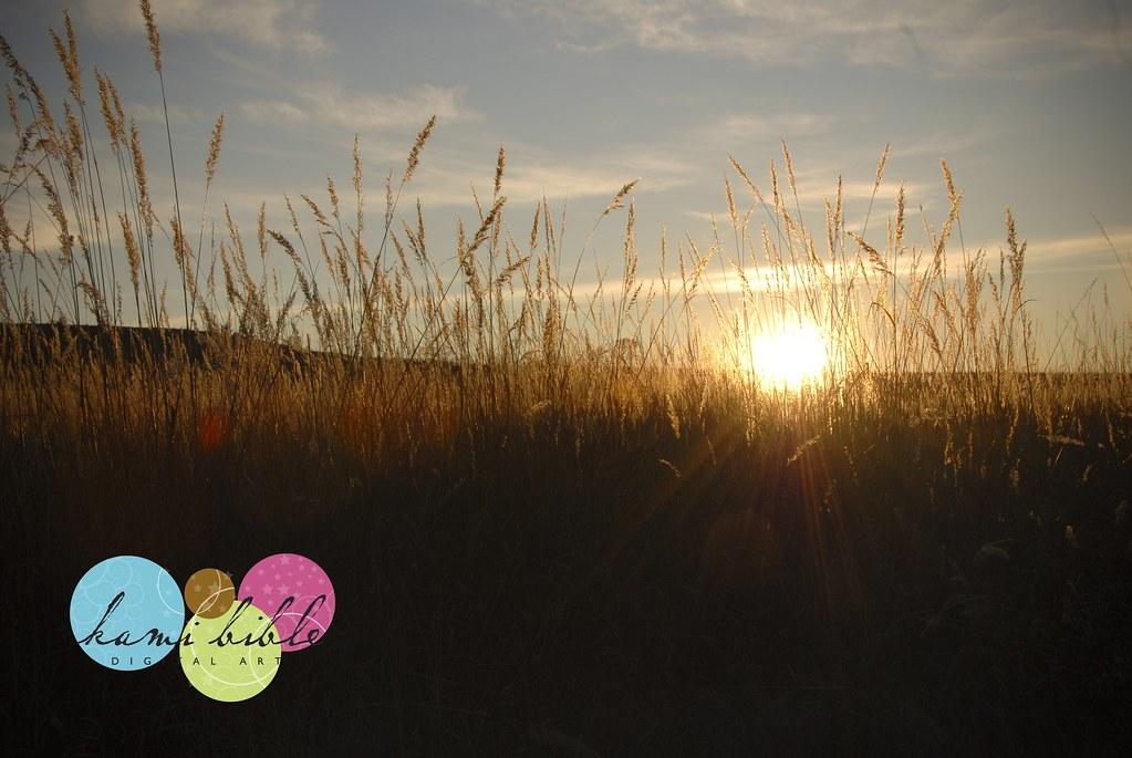 09November_Ranch Pics003