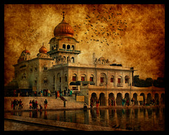 Golden sikh temple Dehli (miacat63) Tags: india temple golden worship textures dehli dome sikh banglasahibgurdwara pareeerica pse6 miacat63