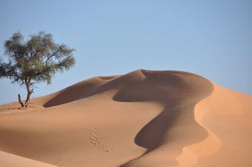 Post card dunes