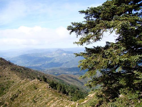 Ruta Sierra Bermeja (6)